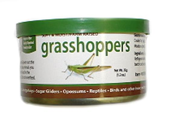Canned Grasshoppers 35 g.