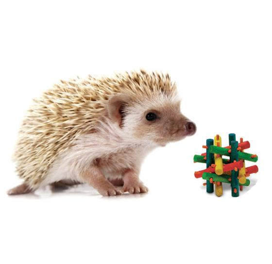 Hedgehog Rolling Toy