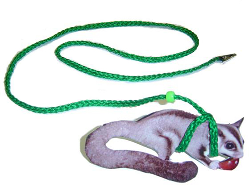 Glider Harness & Leash