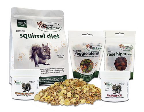 Squirrel Food Starter Package S225EN