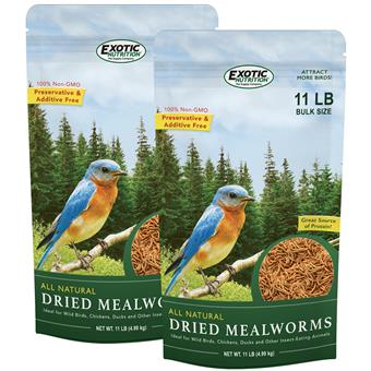 Dried Mealworms 22 lb. box