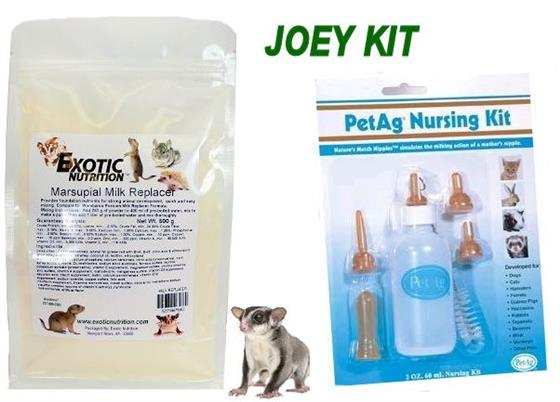 Sugar Glider Joey Kit