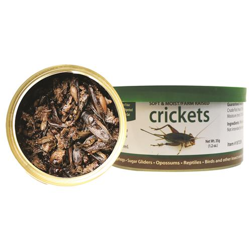 Canned Crickets 35 g.
