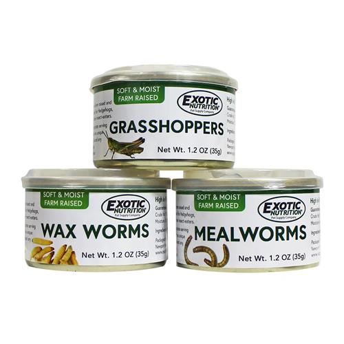 3 Pack Canned Insects