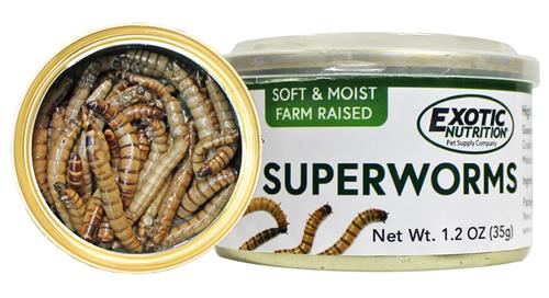 Canned SuperWorms 35g
