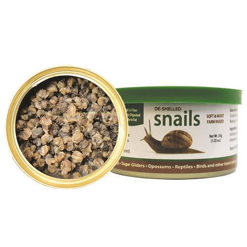 Canned Snails 35 g.