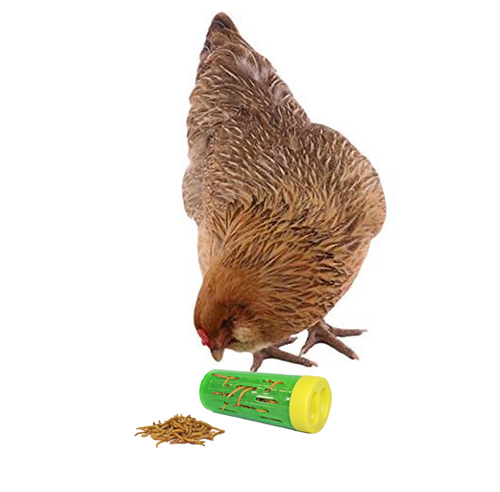 Chicken Treat Roller WARE15021