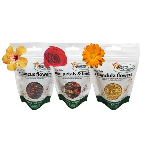 Flower Treat 3 Pack 121212