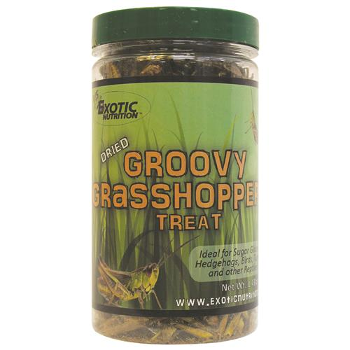 Groovy Grasshoppers