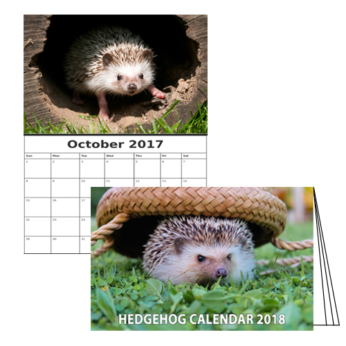 Hedgehog Calendar
