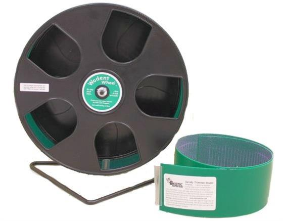 """Wodent Wheel 8"""" With Sandy Trimmer Track For Small Mammals - Exotic Nutrition"""