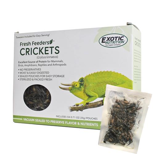 Fresh Feeders / Crickets EN0629