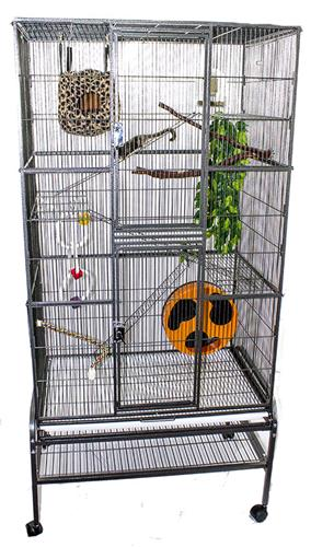 Congo Cage with Accessories