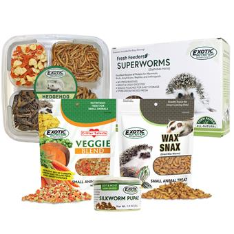 Hedgehog Treat Sampler 16850EN
