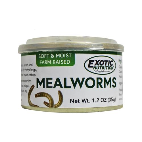 Canned Mealworms 35 g.
