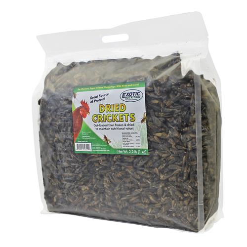 Dried Crickets 2.2 lb. EN3190
