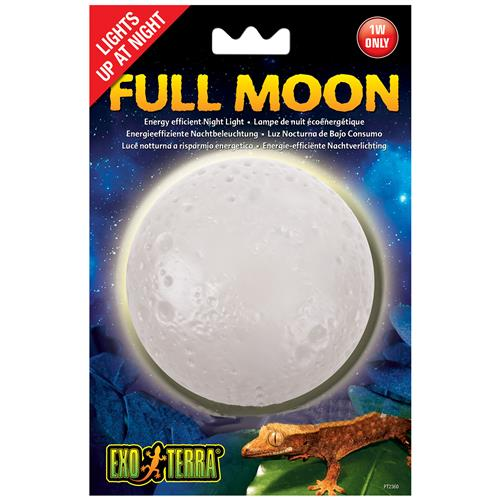 Full Moon Night Light
